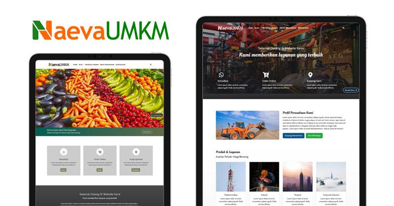 Saatnya bisnis UMKM Go Online